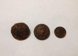 Tynne 5-9.10.2015 Odnaleziona mogiła żołnierzy KOP-23