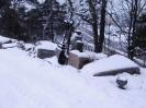 26.01.2011 r. - Białystok, cmentarz św. Rocha-1