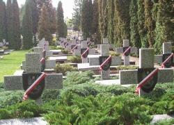 27.09.2013 r. - Włodawa, Wytyczno, 74. rocznica bitwy pod Wytycznem-12